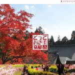 京都市、観光公害対策でDMC支援