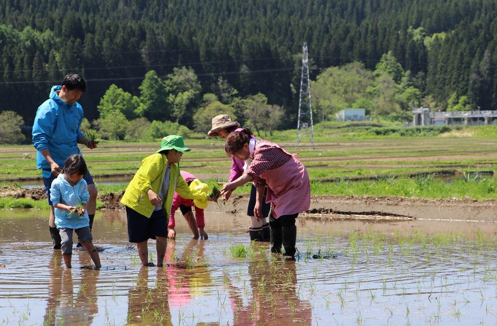 農泊実践地域が500を突破、全国に波及も訪日客誘致に課題