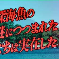 「深海魚の謎につつまれたまち」沼津市が動画で観光PR