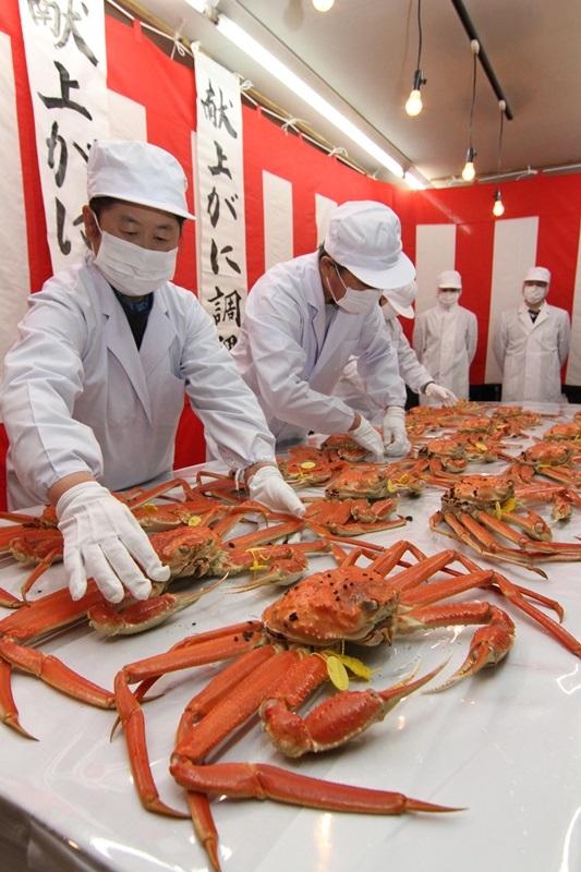 福井県坂井市と東京・品川区が連携事業、しながわ水族館でPR