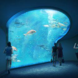 四国最大級の水族館開業へ、時間帯や季節で空間演出変化