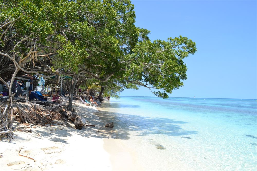 教育旅行先としてのニューカレドニア