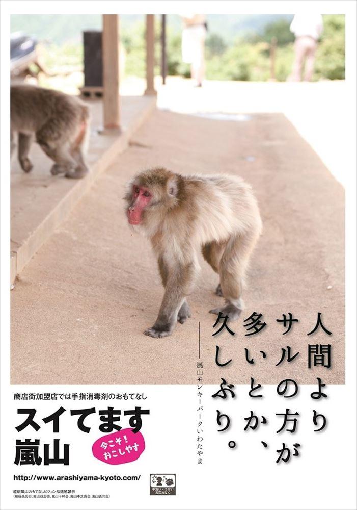 嵯峨嵐山の5商店街、閑散ぶりを逆手に誘客 売り上げ減少に歯止め