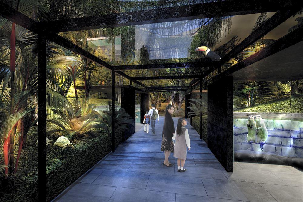 川崎市に初の水族館、多摩川からアマゾンまで世界各地の水辺展示