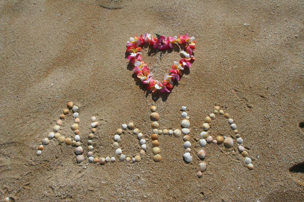ハワイ到着後の自己隔離免除へ、日本向けに事前検査プログラム 米国外で初