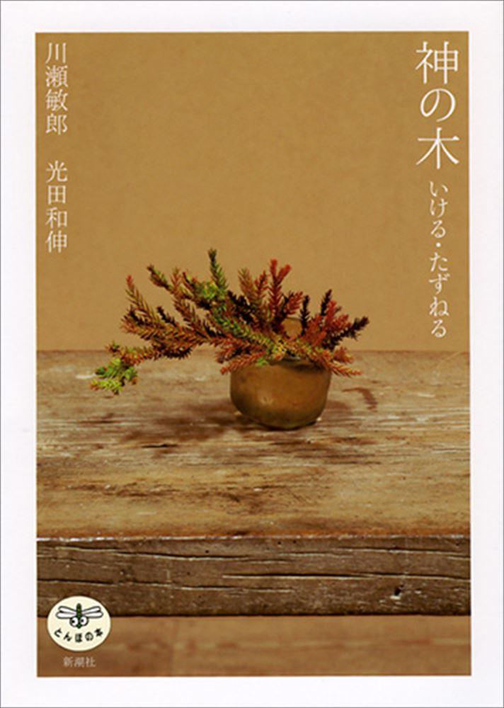 『神の木 いける・たずねる』 日本人に添う特別な存在