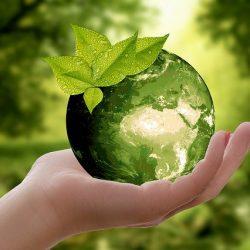 JNTO、SDGsと持続可能な観光を推進 ポストコロナへ方針