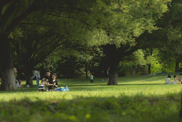 JTB推計、夏の国内旅行者5.3%増 近場で安心・安全が主流